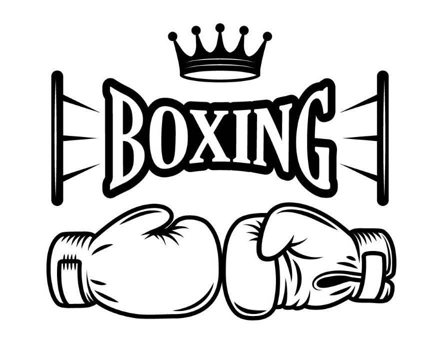 MMA Mixed Fight Handschuhe