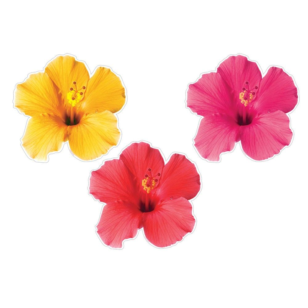 16 inch cutout assortment tropical floral flowercase of 36 party the cutout assortment features three beautiful cutouts of hibiscus flowers izmirmasajfo Choice Image