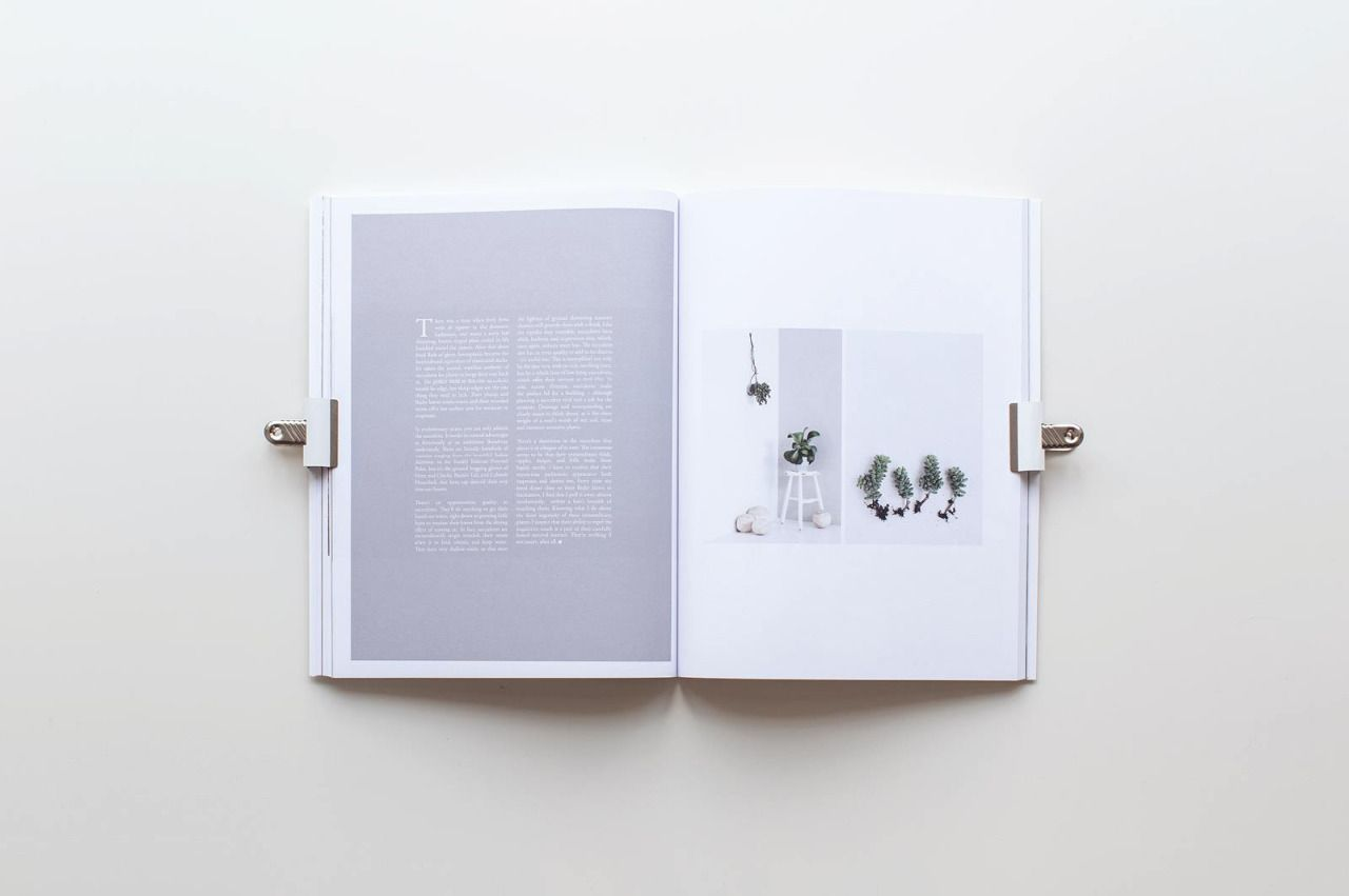 Volume 6 Cereal Cereal magazine