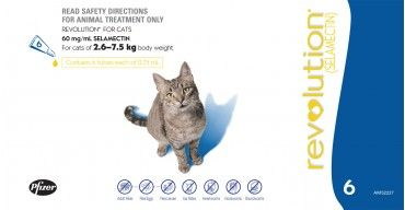 Revolution Cat Blue 2 6 7 5kgs Revolution Cats Animal Treatment Cats