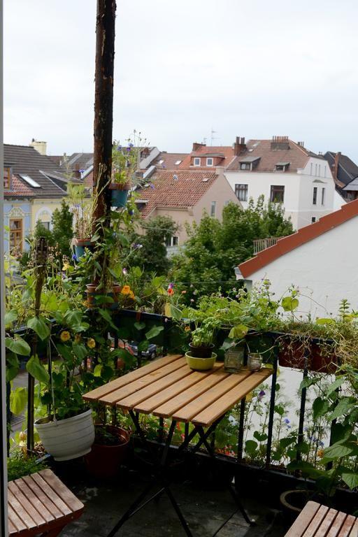 Gestaltungsidee Fur Den Balkon Grune Pflanzen Als Sichtschutz Tisch Und Stuhle Und Ein Paar Blumen Furs Outdoor Dekorationen Tisch Und Stuhle Haus Und Garten