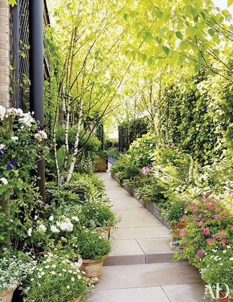 Charmant Shade Loving Plants Such As Foxgloves, Hostas, Spirea, And English And  Boston Ivies Grow Abundantly In Bette Midleru0027s Urban Garden.