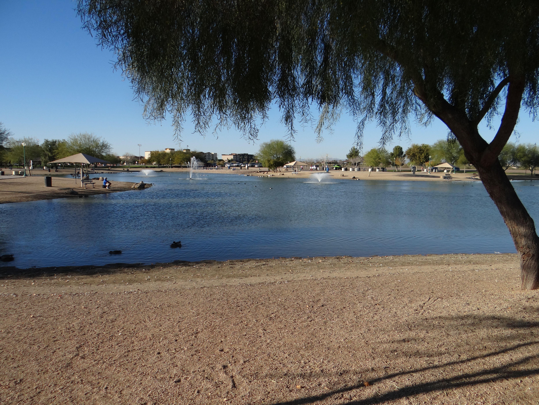 Nice Pond In Surprise Community Park Surprise Arizona Arizona