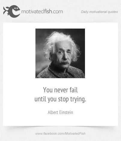 You Never Fail Until You Stop Trying Albert Einstein Daily