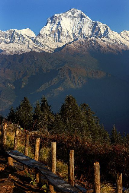 Annapurna base camp trek poon hill view