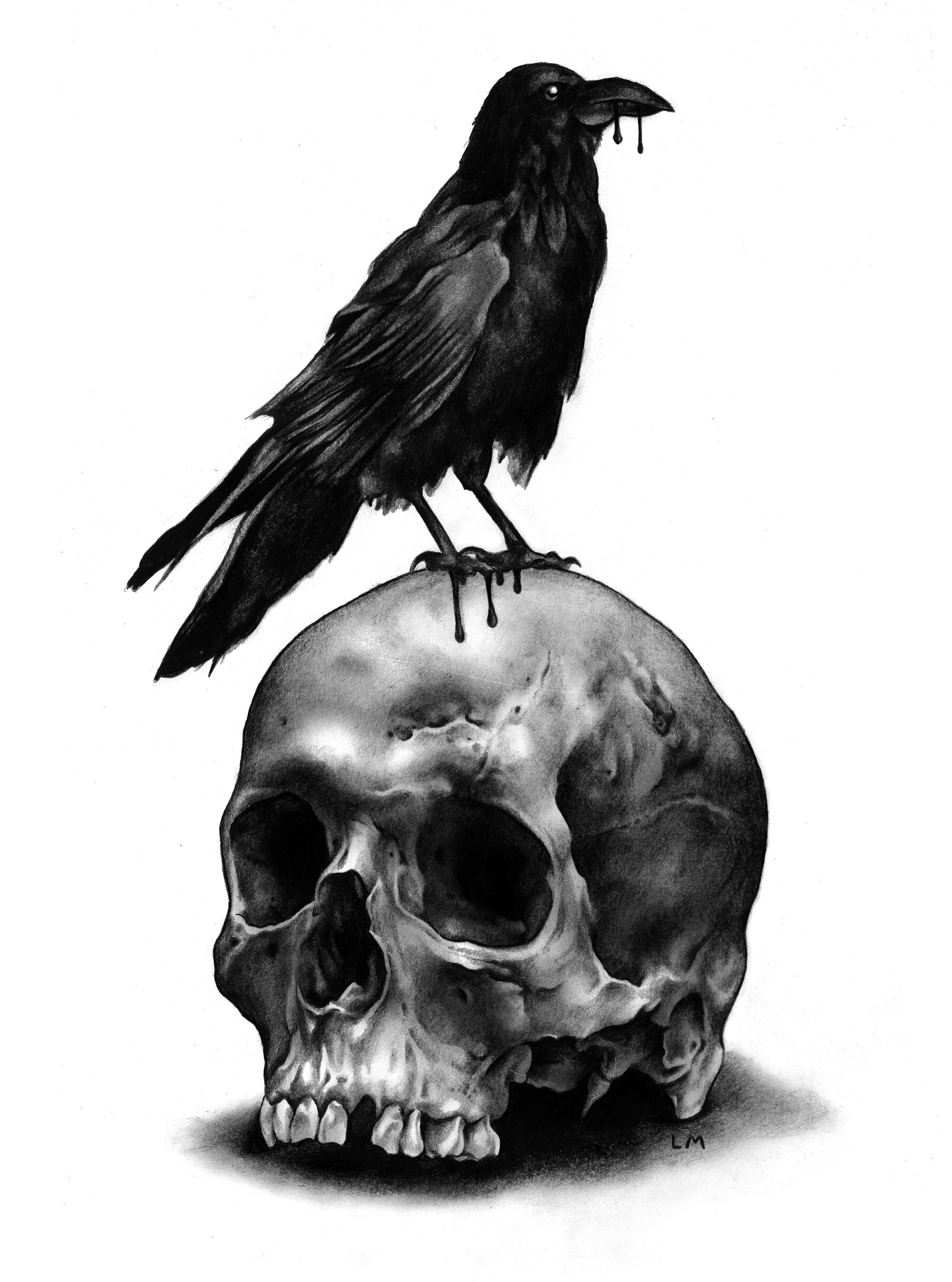 skull and raven caveiras pinterest ravens tattoo and crows. Black Bedroom Furniture Sets. Home Design Ideas