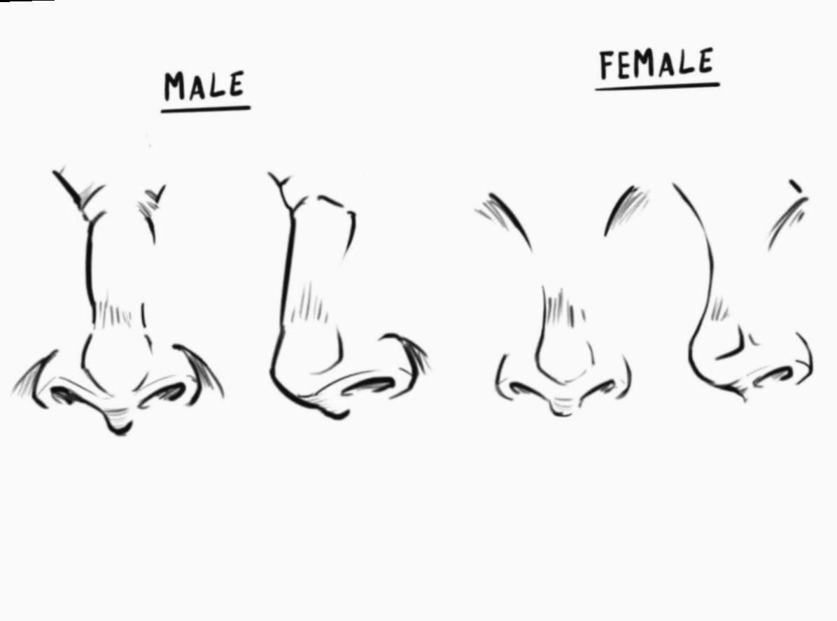 Anime Face Drawing Front Bakugoukatsuki Bakugou Bnha Nose Drawing Female Face Drawing Male Face Drawing