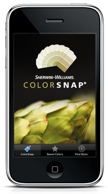 An app for Iphone, Blackberry or Droids from Sherwin Williams.  Matches colors you see and finds a matching color in SW paint....along with coordinating colors, etc.