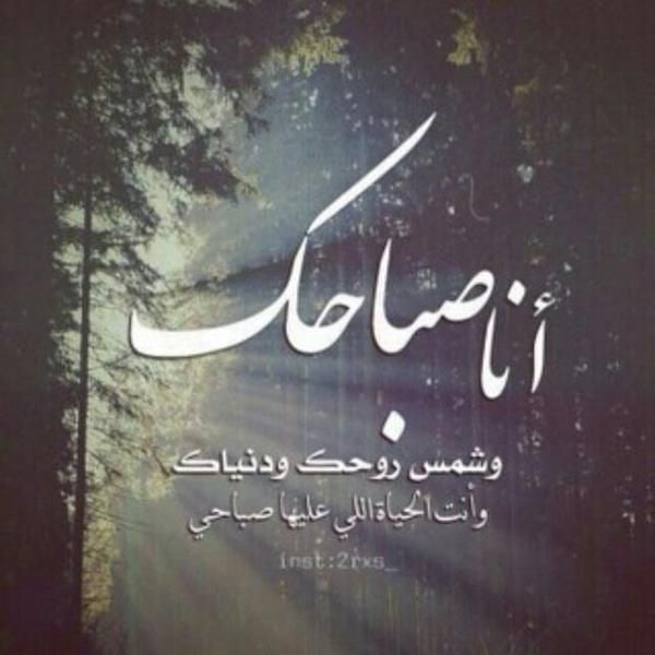 باقات صباح الخير وصور صباحية مكتوب عليها عبارات حب موقع مصري Love Quotes Photos Morning Quotes Images Morning Love Quotes