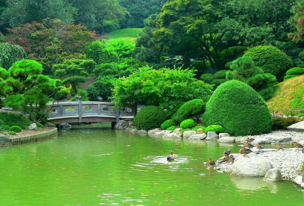 I So Want To Visit The NY Botanical Garden