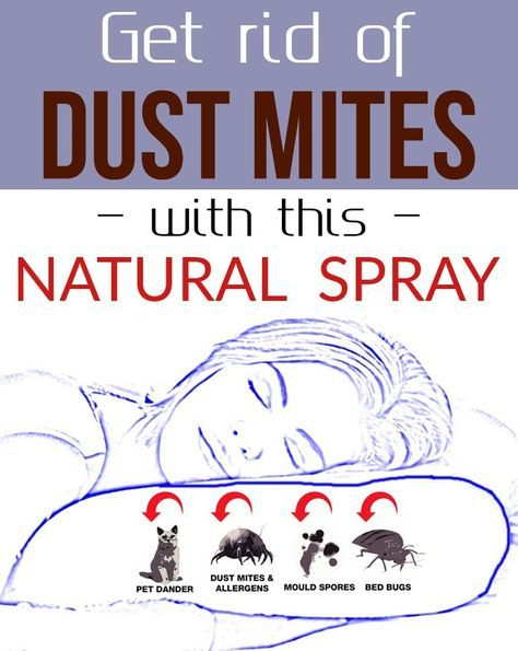 Get Rid Of Dust Mites With This Natural Spray With Images Dust
