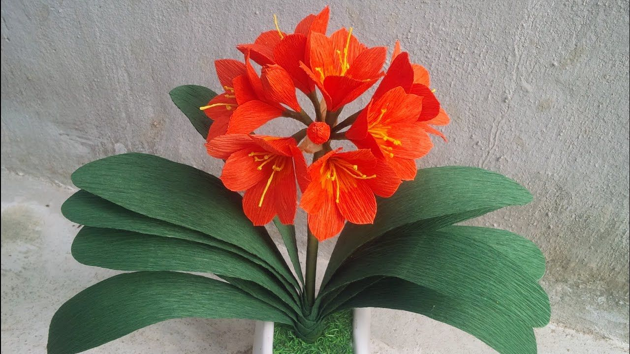 Abc Tv How To Make Kaffir Lily Clivia Miniata Paper Flowers From