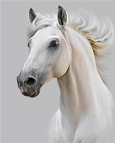 Photo of Horse DIY Paint By Number Kit Collection E – SZGD3613 / 40x50cm No Frame