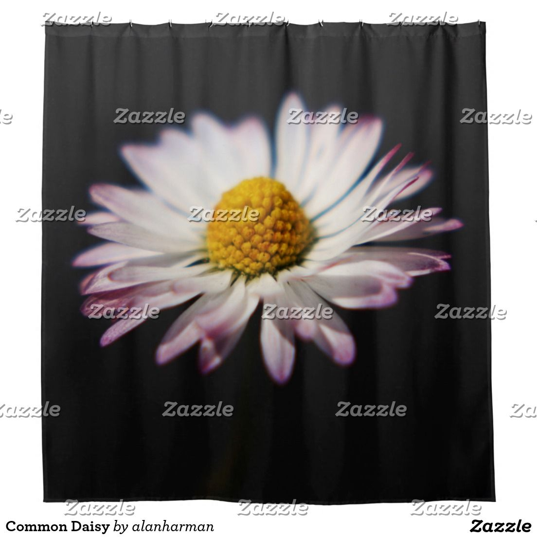 Common Daisy Shower Curtain | Daisies, Curtains and Shower curtains