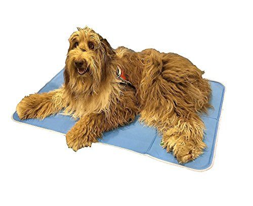 Cheap The Green Pet Shop Self Cooling Pet Pad Large 35 4 Inch X