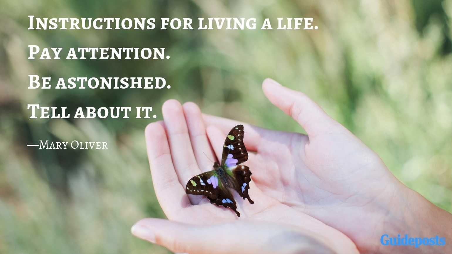 10 Inspiring Quotes from Poet Mary Oliver   Mary oliver ...