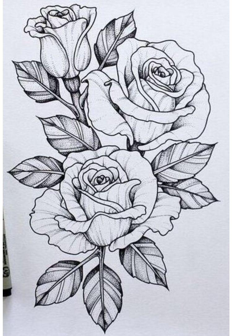 25 Beautiful Flower Drawing Information \u0026 Ideas