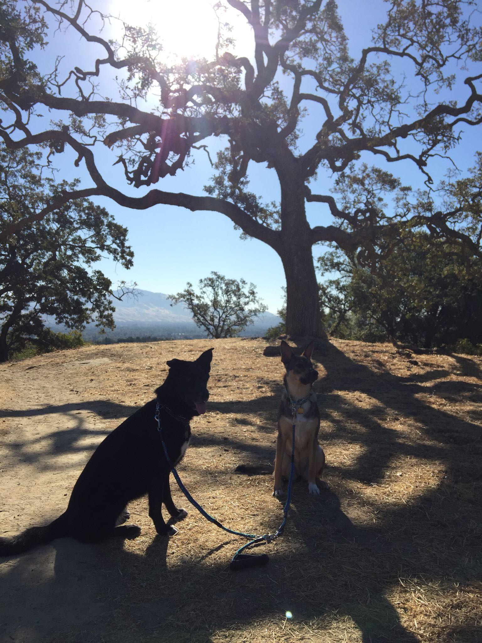 Enjoying the outdoors http://ift.tt/2d13nGe