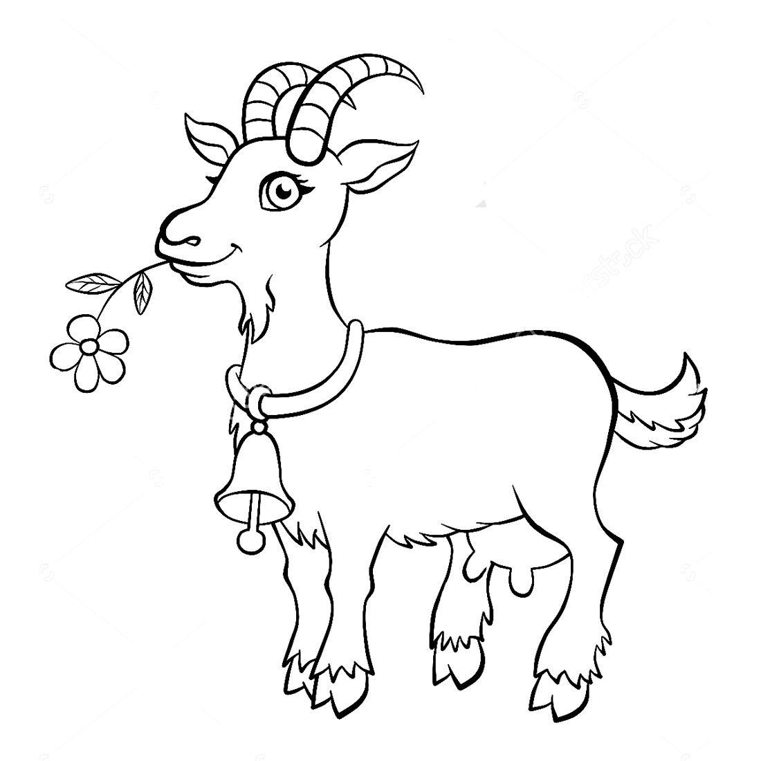 раскраска коза для детей: 17 тыс изображений найдено в ...