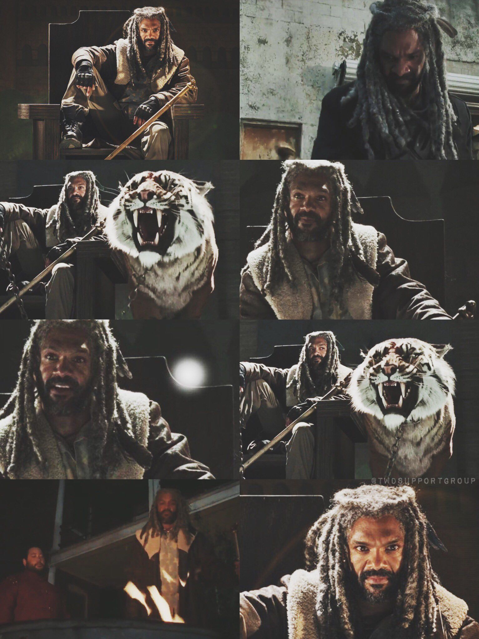 King Ezekiel Shiva The Walking Dead Season 7 The Kingdom