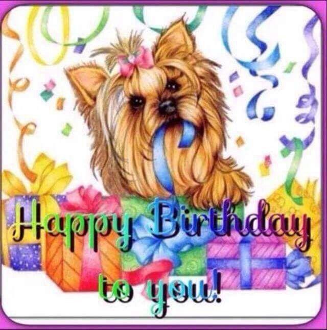 Yorkies Happy Birthday Pictures Happy Birthday Messages Happy Birthday Greetings