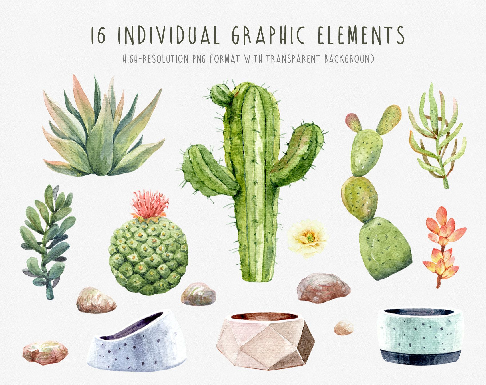 Watercolor Cactus Clipart Cacti Succulents With Pots Digital