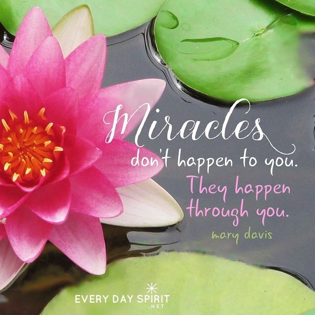 Miracles happen through small moments and great beauty, through ...