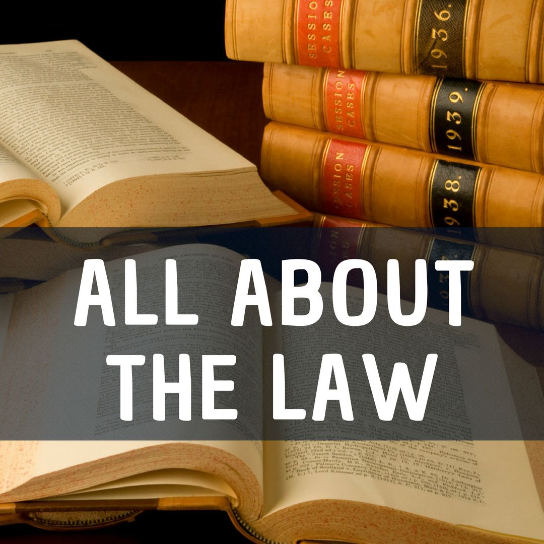 All about law judicial branch executive branch law