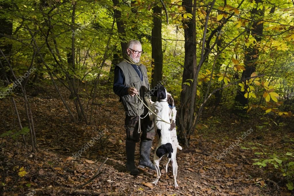 Men looking for truffles in the woods with his dog - Stock Photo , #sponsored, #woods, #truffles, #Men, #Photo #AD