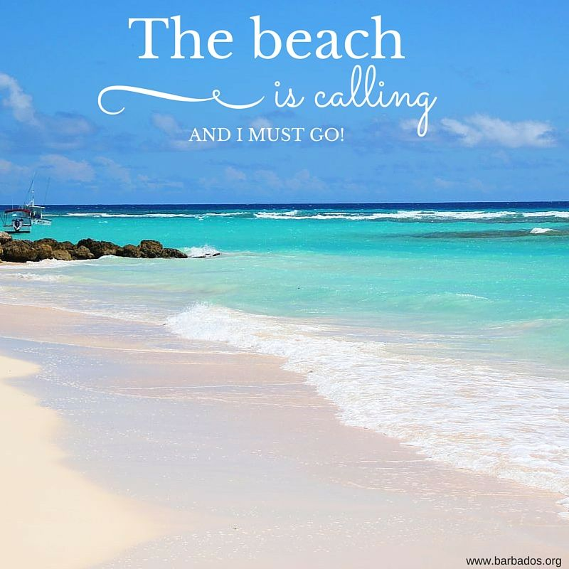 Image result for the beach is calling""