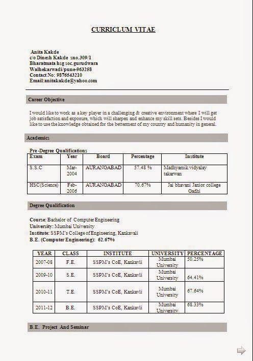 Examples Resume Sample Template Example Ofexcellent Curriculum