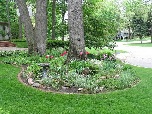 Landscape Island in Front Yard (With images) | Front yard ...