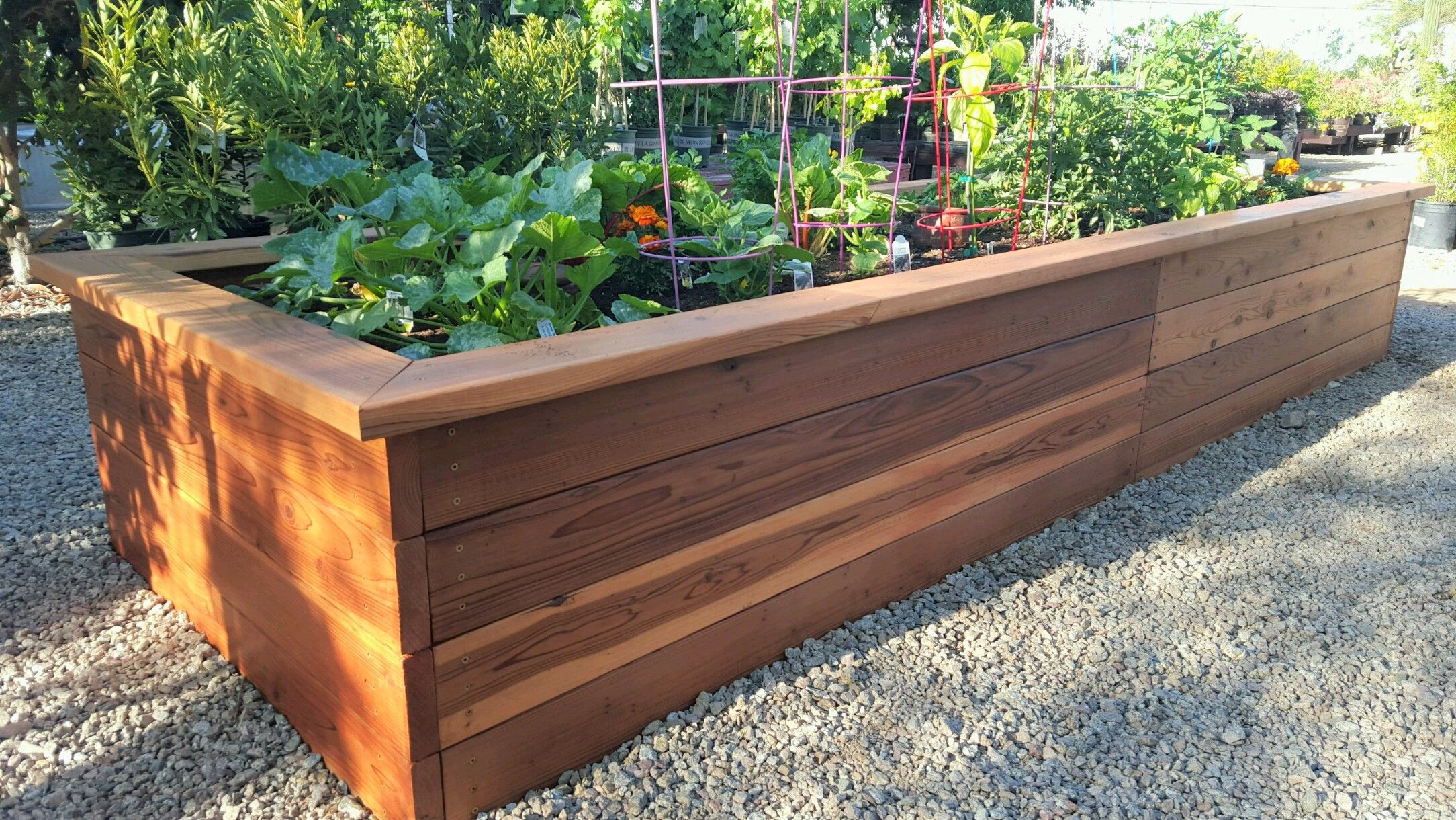 Redwood Raised Garden Bed Self Watering Planter Raised Garden