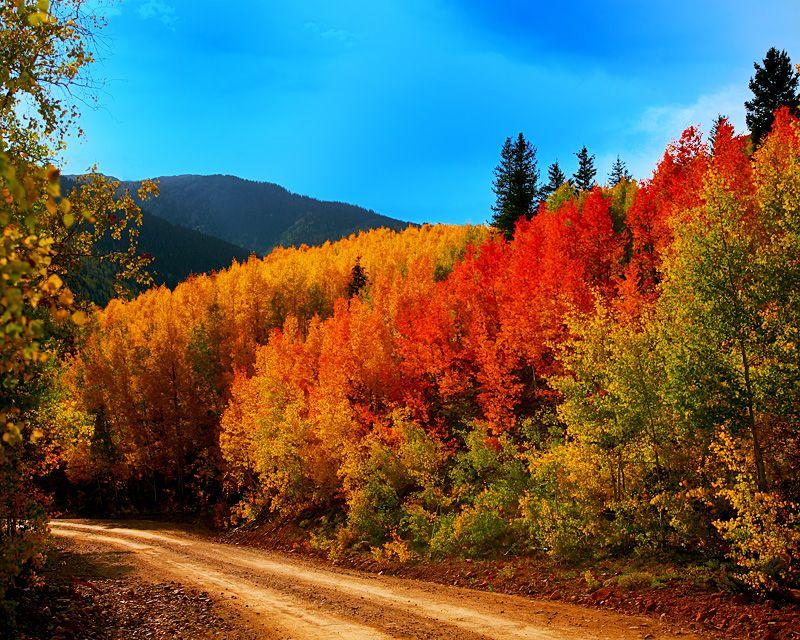 colorado | Backroad Colorado Fall Colors. Near Silverton ...