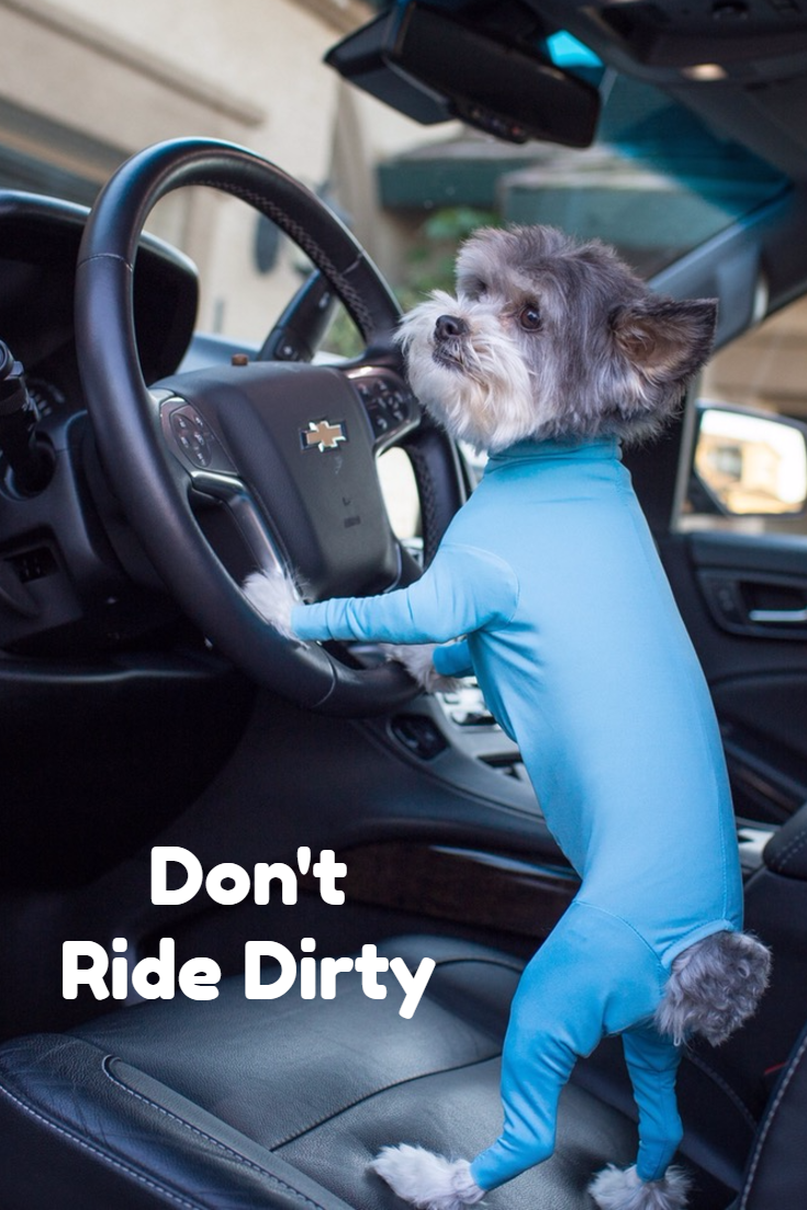 Keep your ride free of dog hair with the Shed Defender. Ridin\' Dirty ...