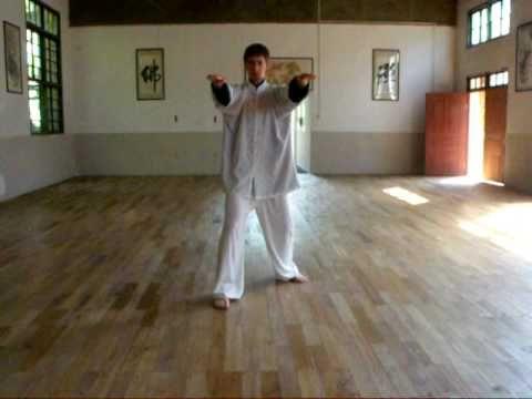 Fujian White Crane Kung Fu 1st Form San Zhan 3 Wars Youtube White Crane Kung Fu Chinese Martial Arts