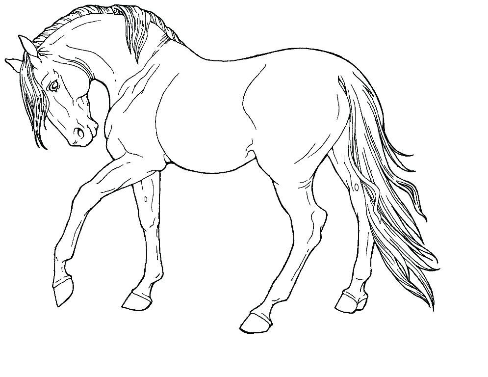 Cool Horse Coloring Pages Printable Free Coloring Sheets Horse Coloring Pages Horse Coloring Horse Drawings