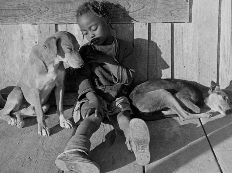 "Alfred Eisenstaedt photographed sharecroppers in Mississippi for a 1936 ""dummy"" issue of LIFE — a full practice issue made before the magazine's first issue came out. The photos featured the friends and family of 48-year-old Lonnie Fair. Here, his daughter naps with her dogs. See more: http://ti.me/1HmVrYR  (Alfred Eisenstaedt—The LIFE Picture Collection/Getty Images)"