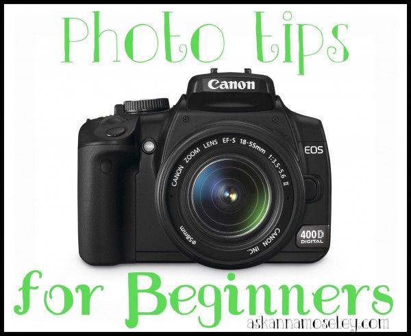 Best DSLRs of 2019 - Cameras for Beginner, Intermediate ...