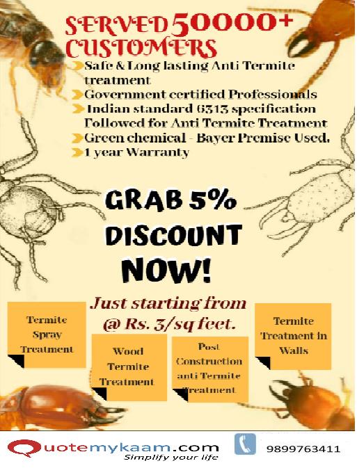 Termite Pest Control Offer Termite Treatment Termite Control Termite Pest Control