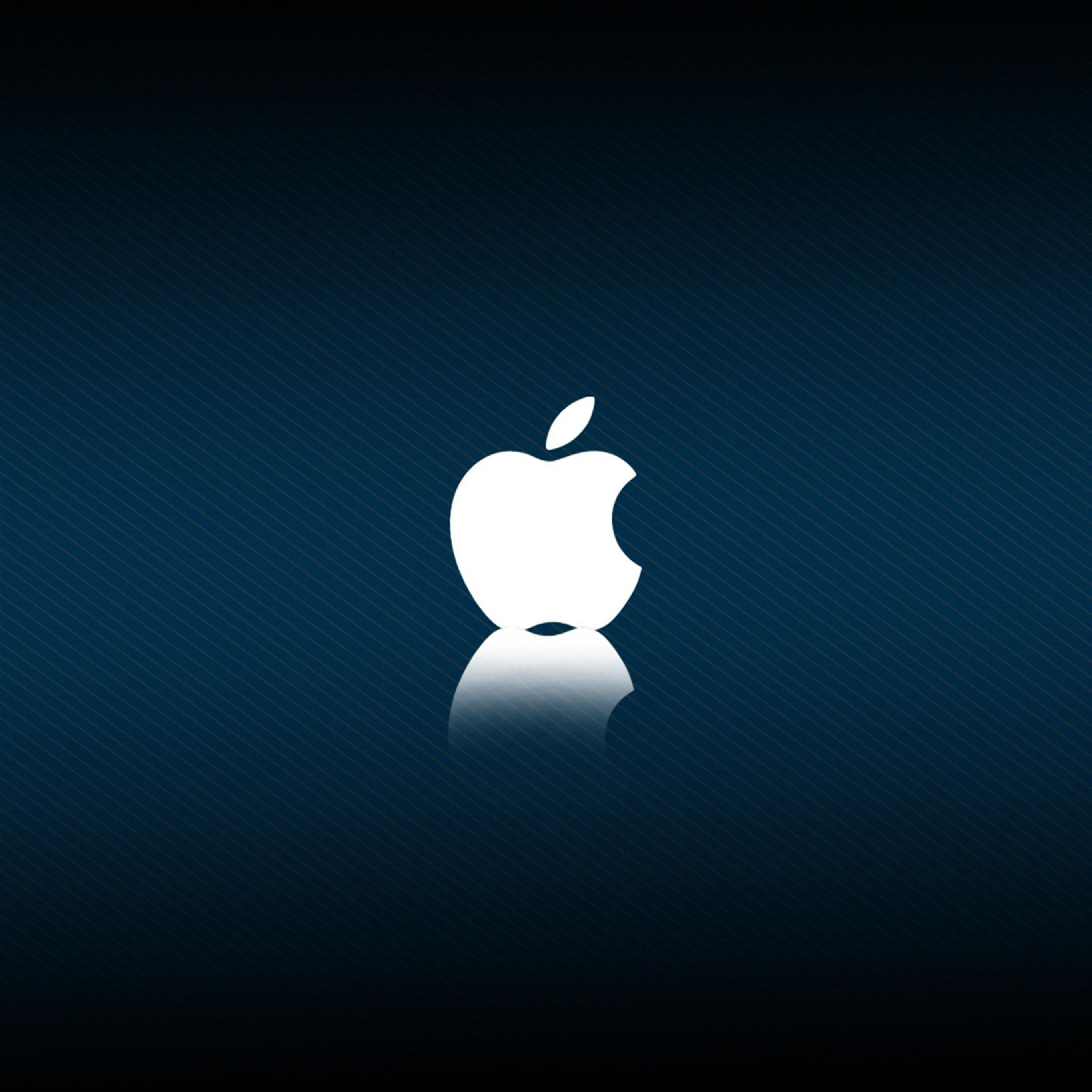 Apple Ipad Pro Wallpaper 133 Ipad Pro Others Wallpaper