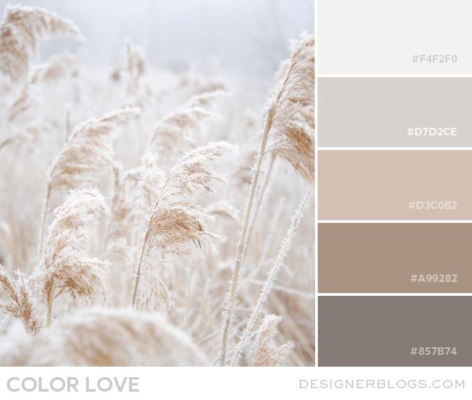 Color Love   Soft Neutrals - Designer Blogs