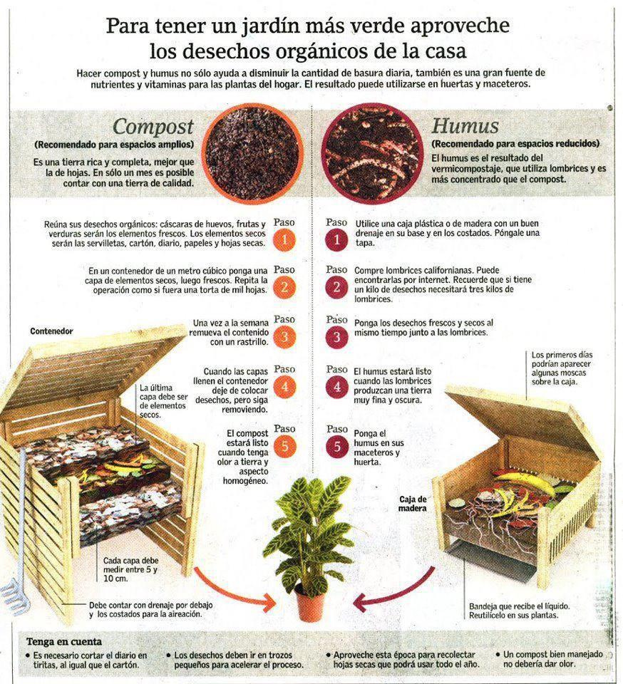Compost Humus Compost Huerta Organica En Casa Como Hacer Composta