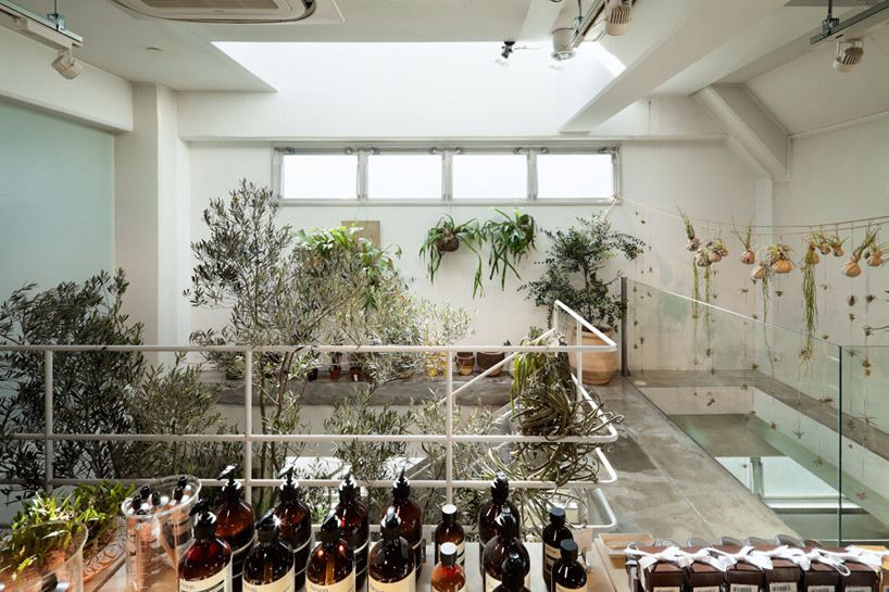 schemata architecture office: today's special jiyugaoka