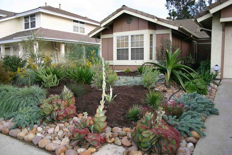 Drought Tolerant Backyard Designs great cdeebdbdddd by drought resistant landscapes trendy drought resistant landscaping by drought resistant landscapes Find This Pin And More On Drought Tolerant Garden Ideas