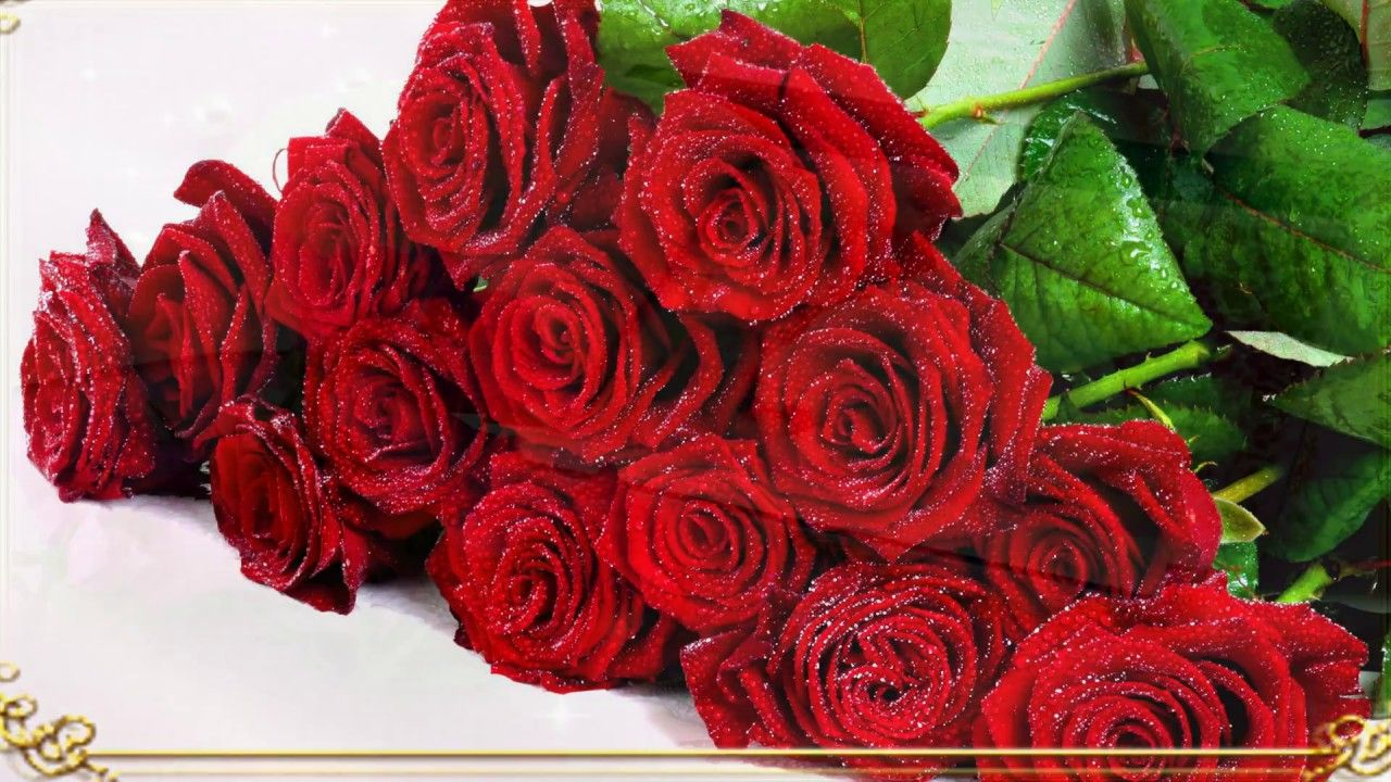 Ателье розы видео — img 7