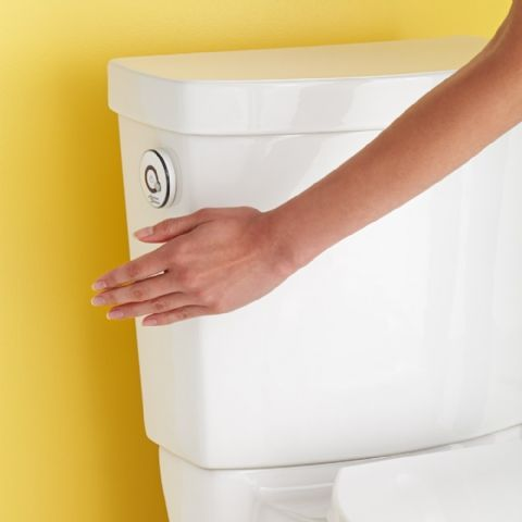 View Clean Activate Germ Free Touchless Flush Right
