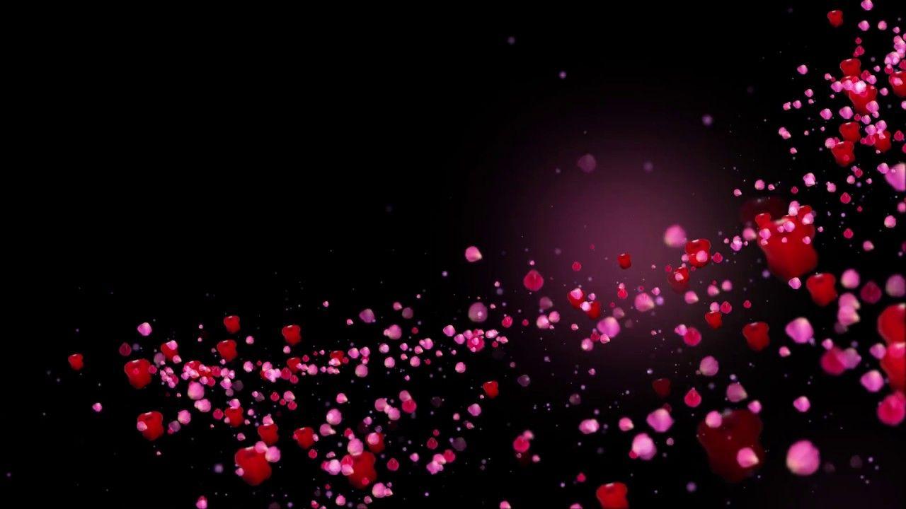 Romantic Flying Red Rose Flower Petals Love Heart Wedding Animated Backg Red Rose Flower Iphone Background Images Floral Border Design