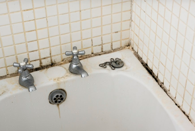 How To Get Rid Of Mold And Mildew At Home In 2020 Mold In Bathroom Diy Bathtub Mold Remover