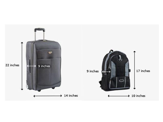 International Travel Delta Baggage